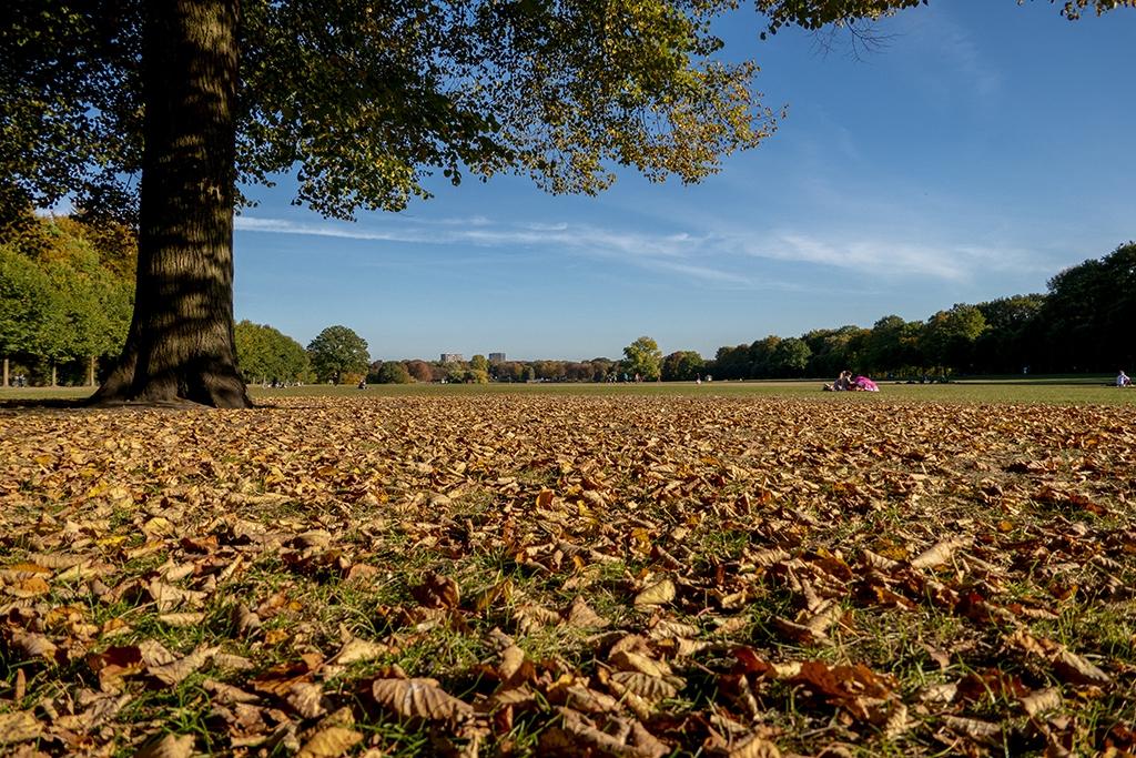 Stadtpark Winterhude