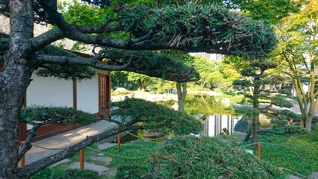 Planten un Blomen Japanischer Garten