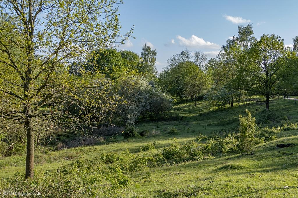 Naturschutzgebiet Höltigbaum
